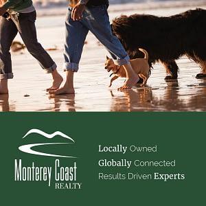 Monterey Coast 900×200